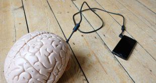 onda theta, un sms che modica il nostro cervello