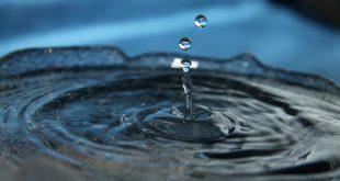 vivere senza bere acqua
