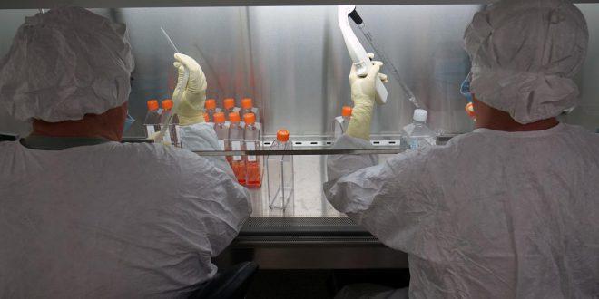 vaccino virus zika