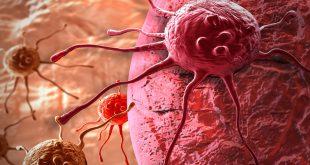 cancro-cellule