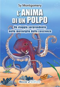 <strong>Acquista il libro su Amazon</strong>