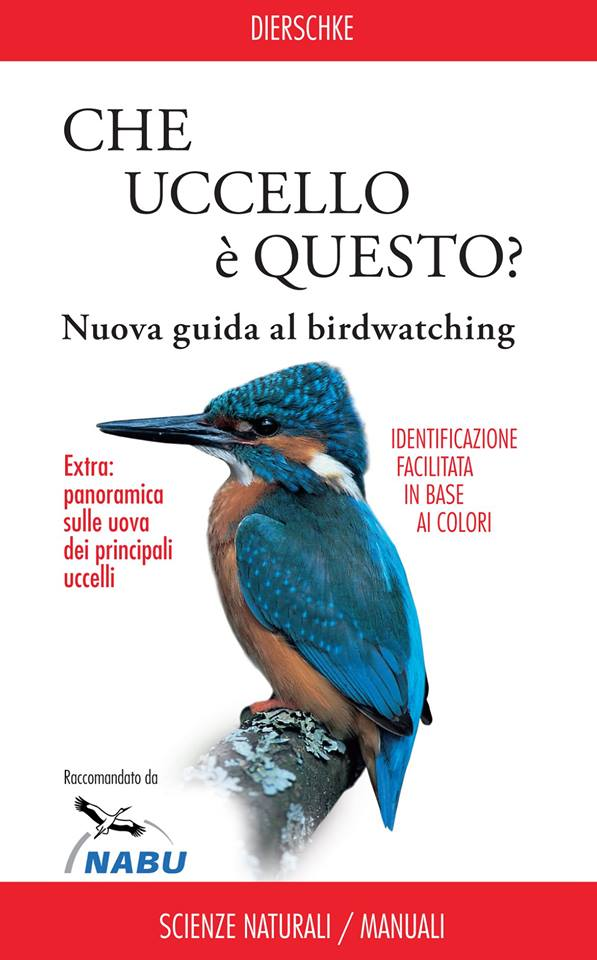 Acquista il libro su Amazon