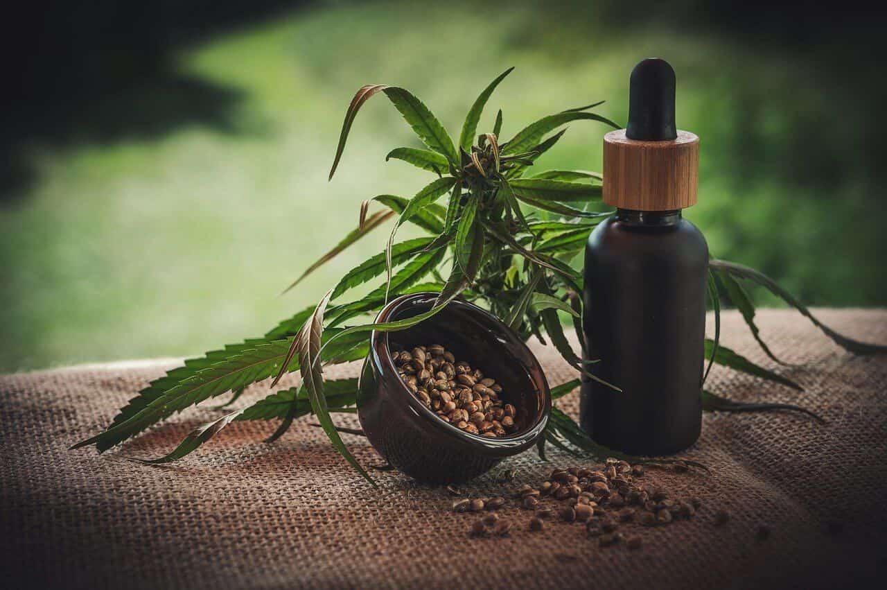 uso terapeutico cannabis