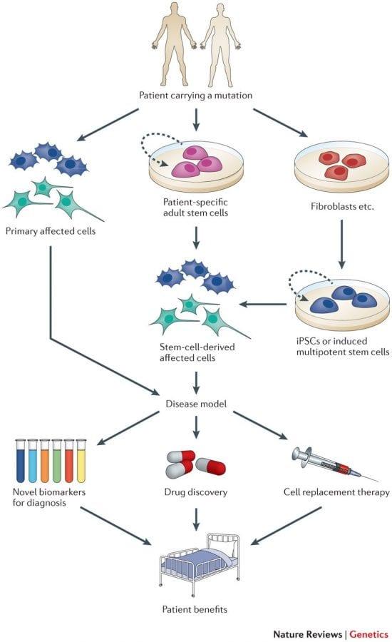 IPSC Disease modeling