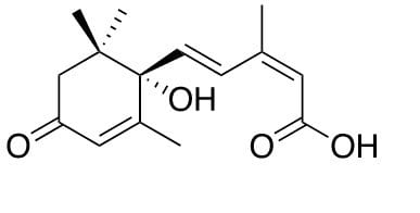 acido abscissico