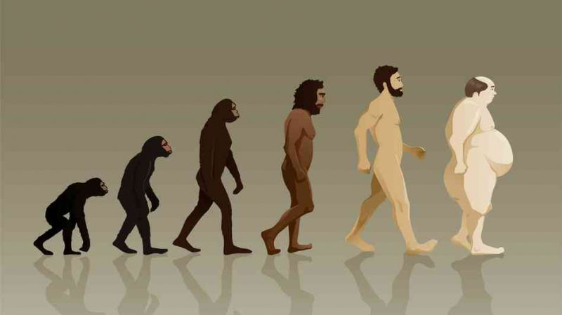 obesità evoluzione