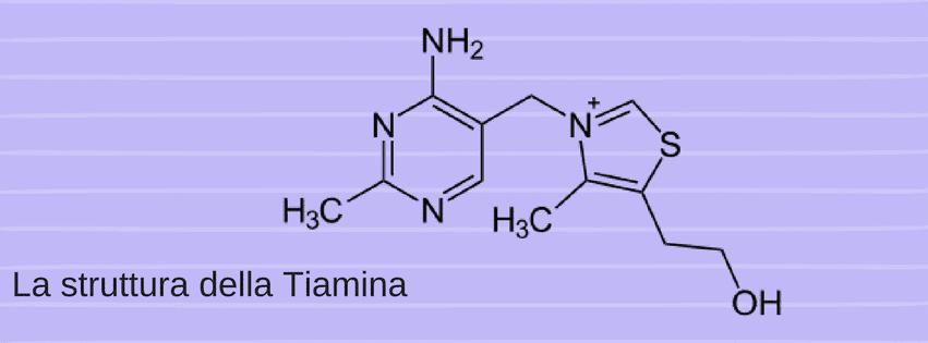 la struttura della tiamina o vitamina b1