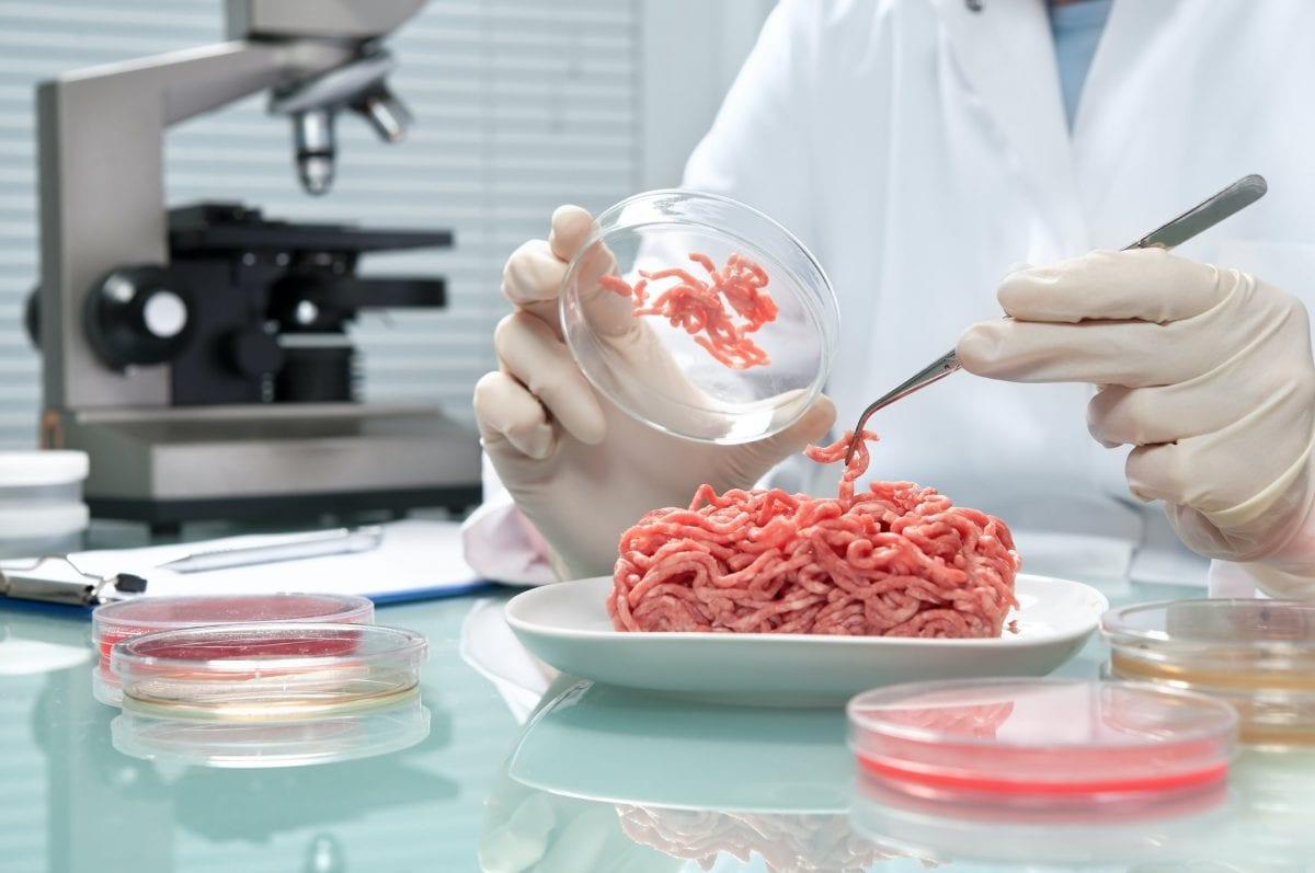 tecnico di controllo qualità agroalimentare e molecolare