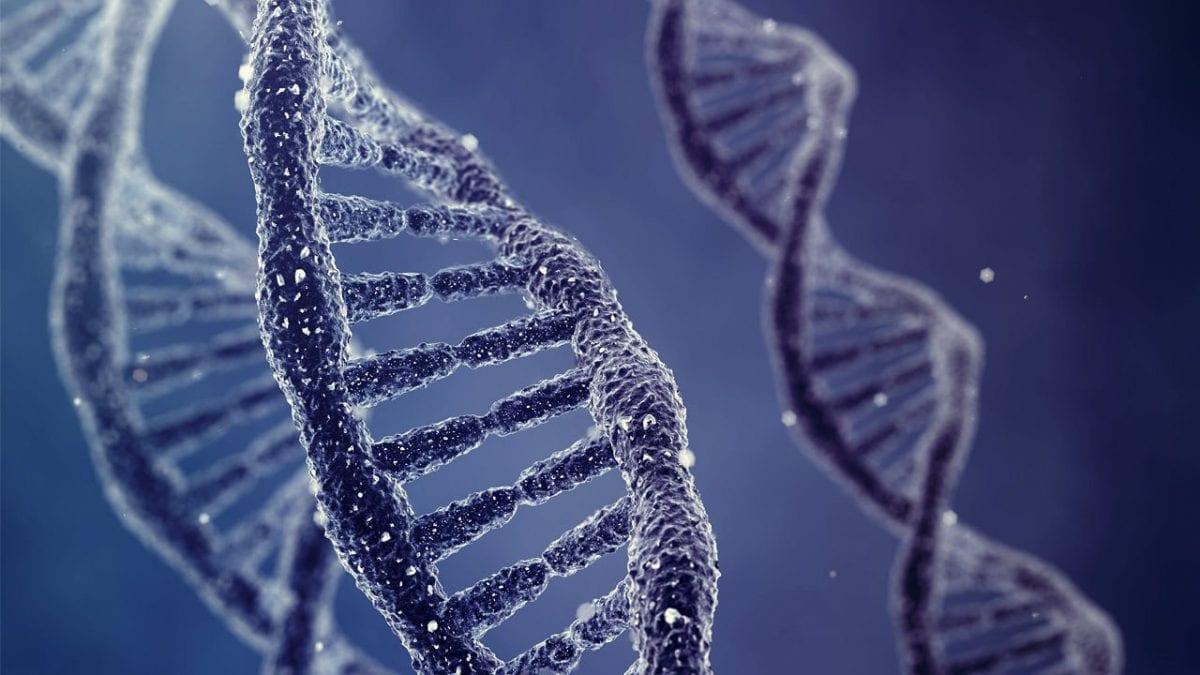 la scoperta del DNA