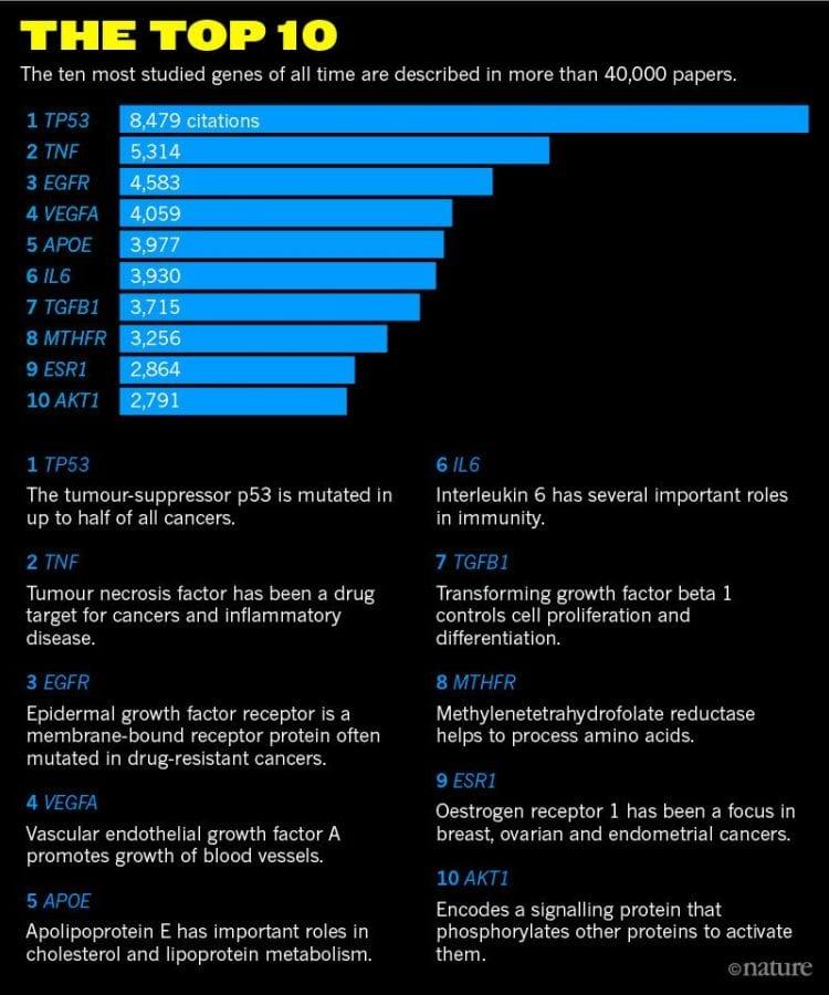 geni più studiati in biologia