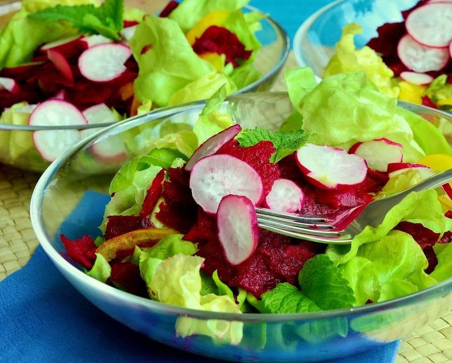 La qualità microbiologica delle insalate in busta
