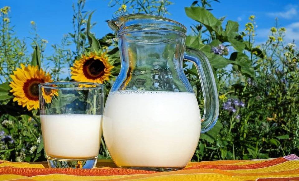Latte di kefir: origini, composizione e benefici