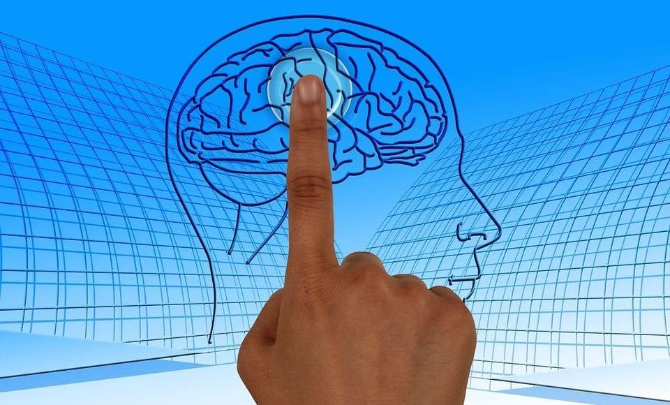Alzheimer: importanti novità arrivano dal microbioma