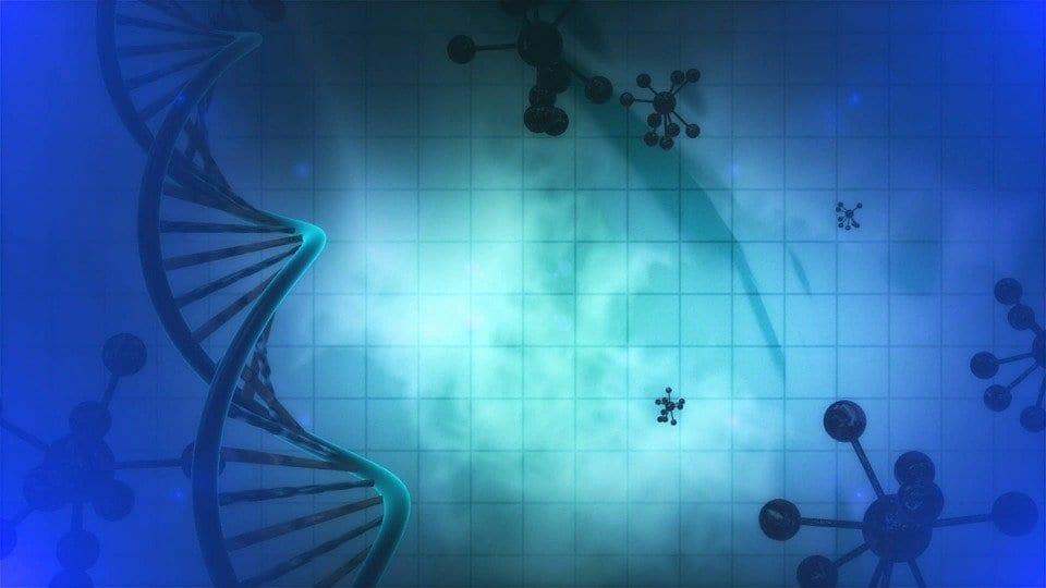 MicroRNA: gli interruttori molecolari dei geni