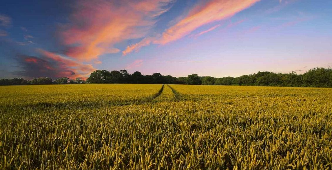 agricoltori incontri sito commerciale
