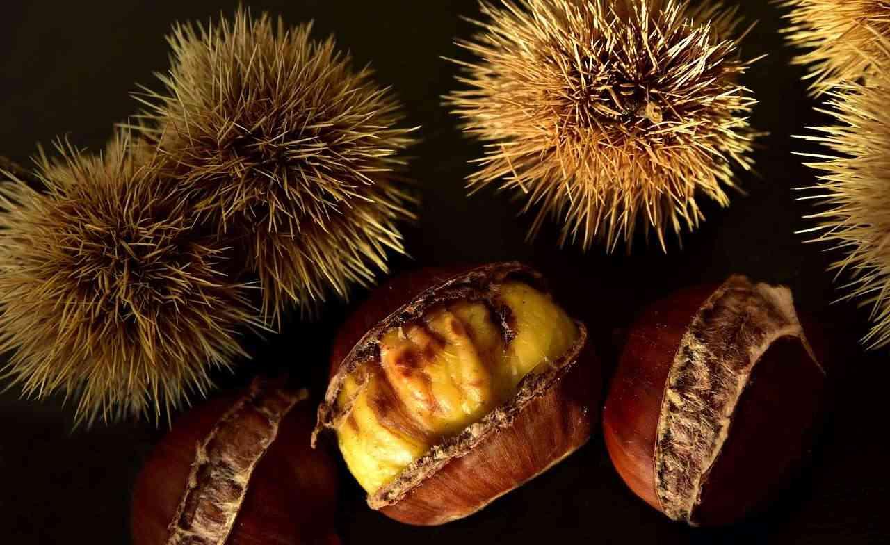 qual è la differenza tra castagne e marroni?