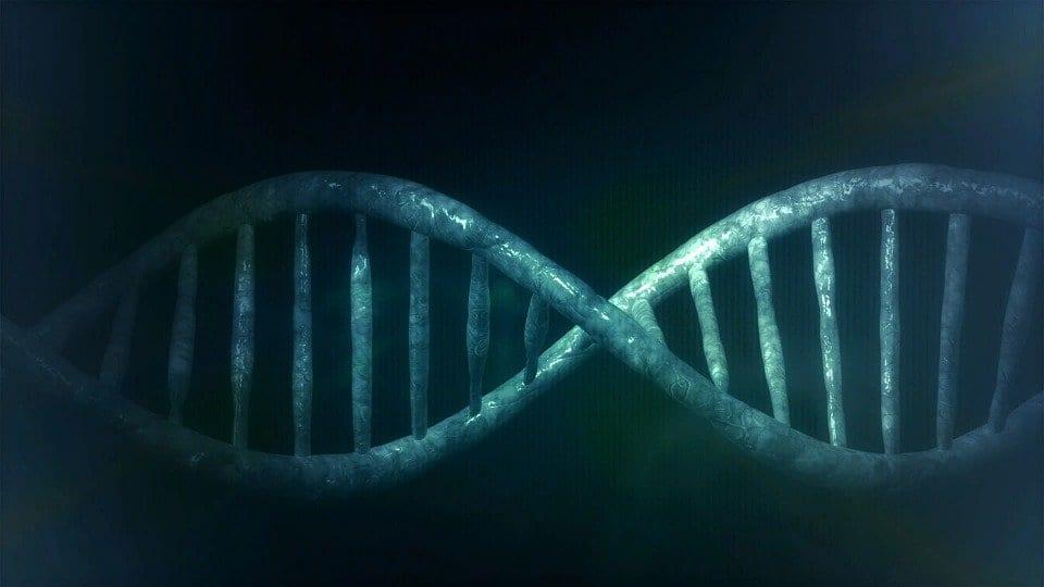 Tra genio e sregolatezza: Kary Mullis e la PCR