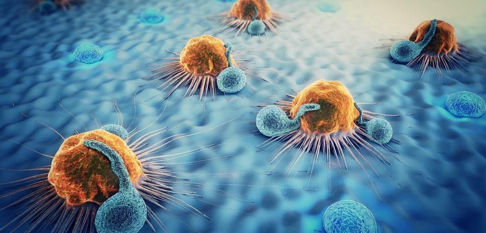 Immunoterapia: la nuova arma contro il cancro
