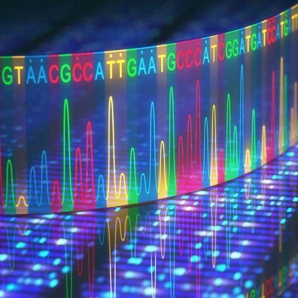 Genomica Funzionale e Genomica Comparativa