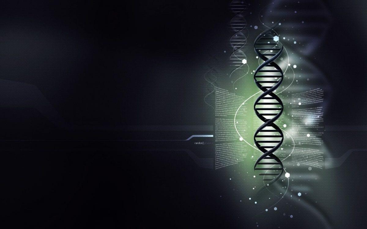 Acidi Nucleici: struttura e funzione