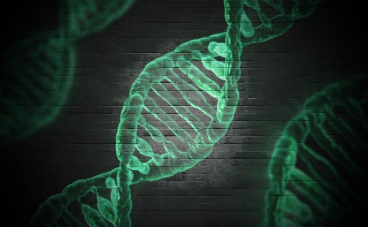 Mutazioni geniche, cromosomiche e genomiche