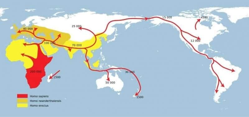 Mappa che descrive la teoria dell'out of Africa-