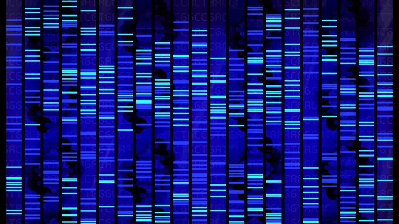 Sequenziamento del DNA e mappe genetiche