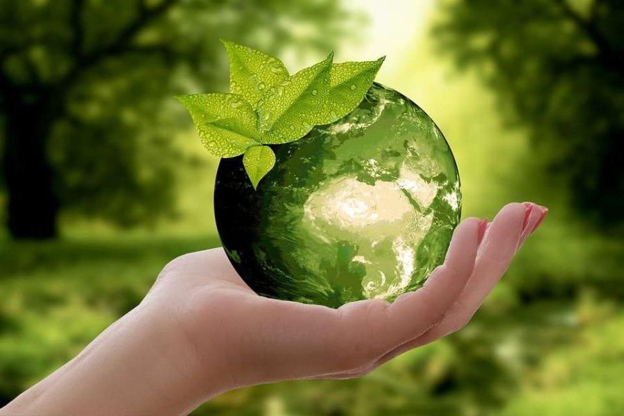 i servizi ecosistemici