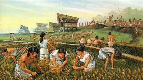 Lo sviluppo dll'agricoltura favorì la nascita delle prime comunità umane riunite in piccoli villaggi.