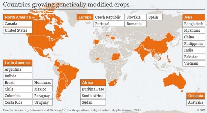 Nazioni in cui le coltivazioni GM sono ammesse