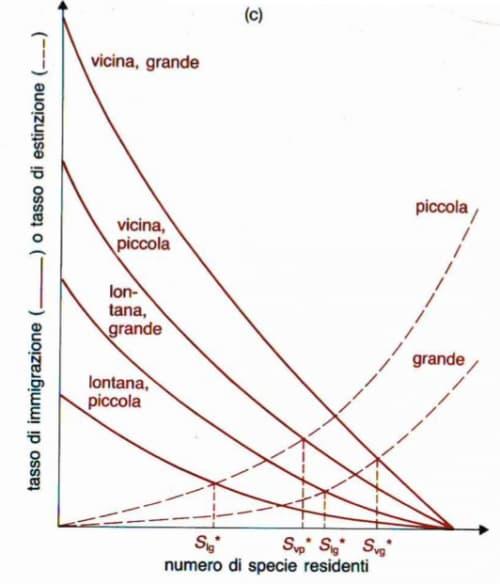 Teoria della Biogeografia insulare