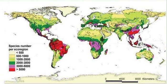 Distribuzione della biodiversità sul pianeta