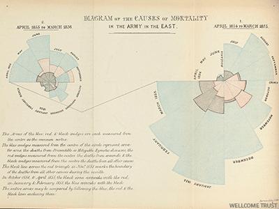 Coxcomb, grafico a torta inventato da Florence Nightingale. Tratto da un dossier da lei scritto