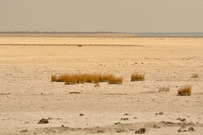 Kalahari settentrionale