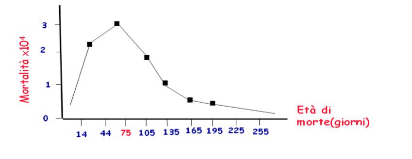 Mortalità per SIDS/giorni di vita
