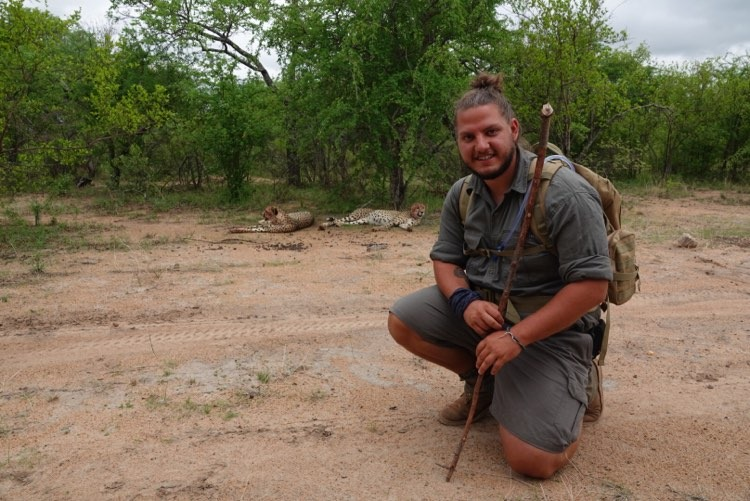 guida safari