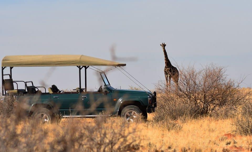 guida safari africa