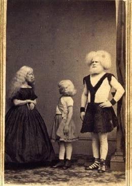 famiglia lucasie