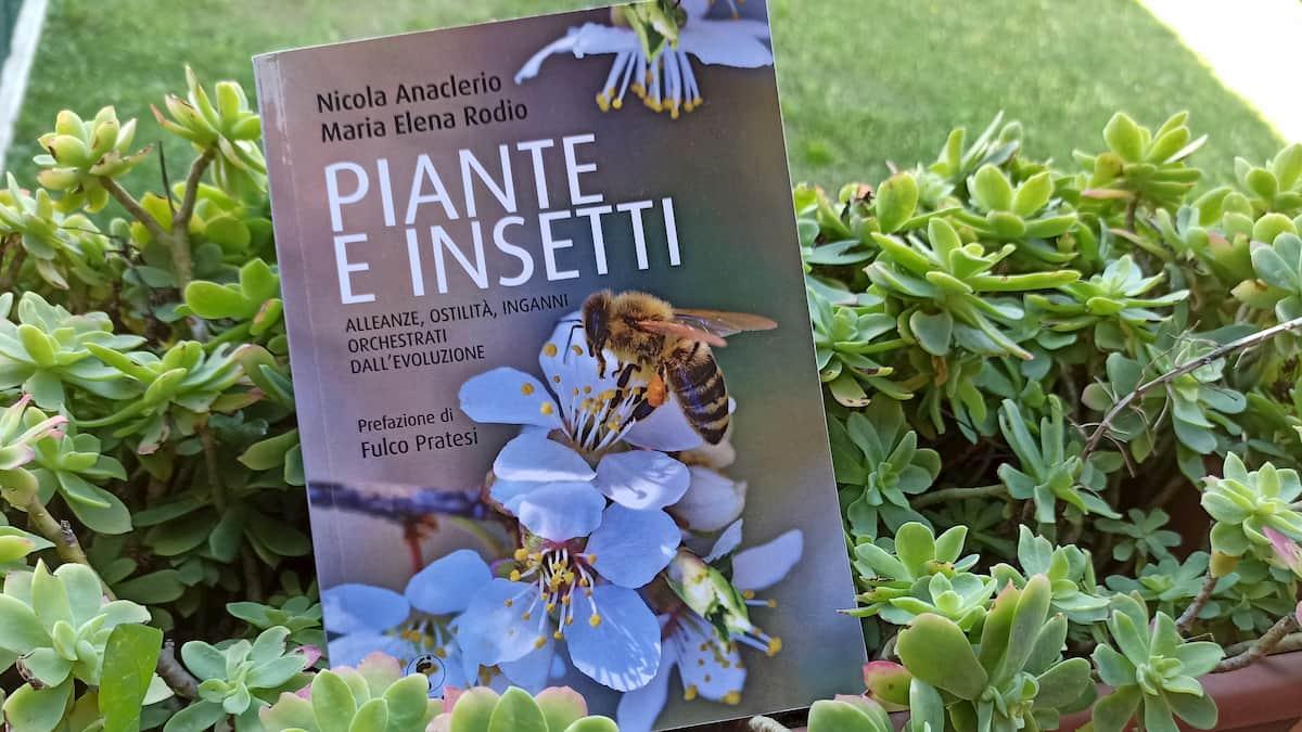 piante e insetti recensione