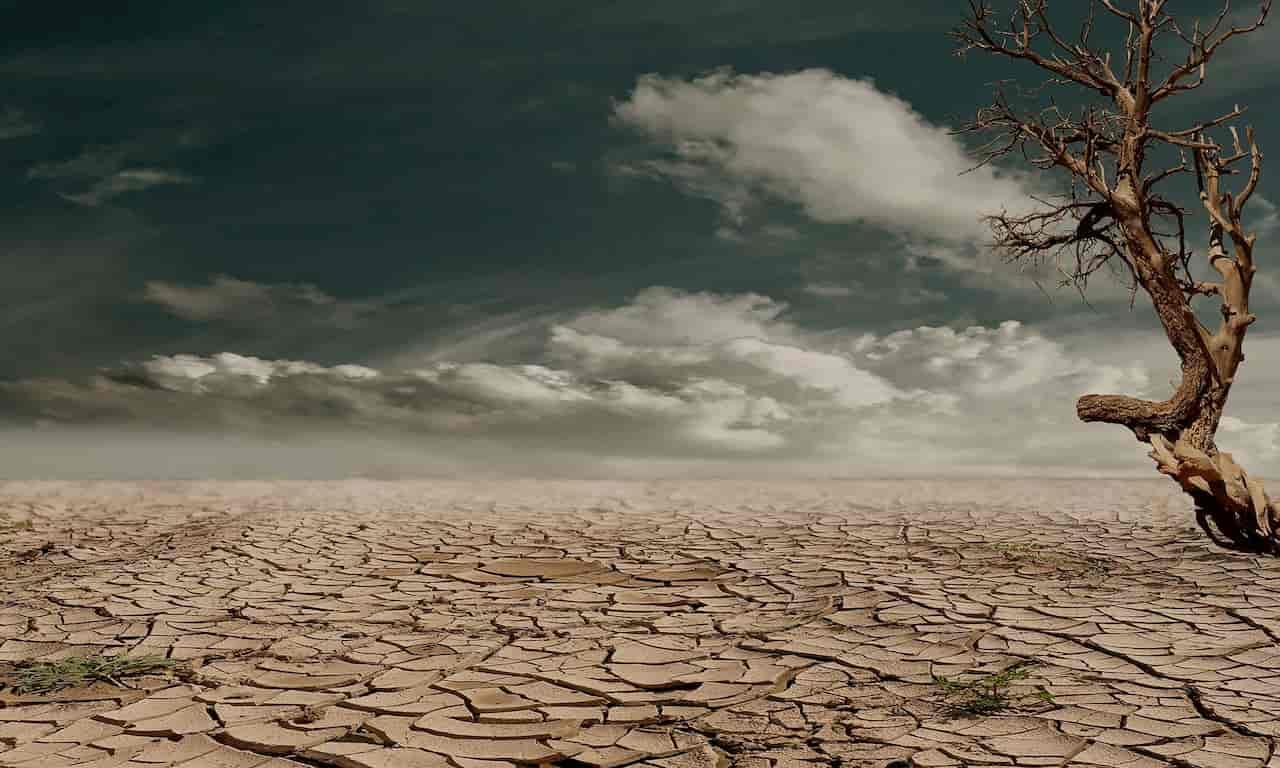 salinizzazione del suolo
