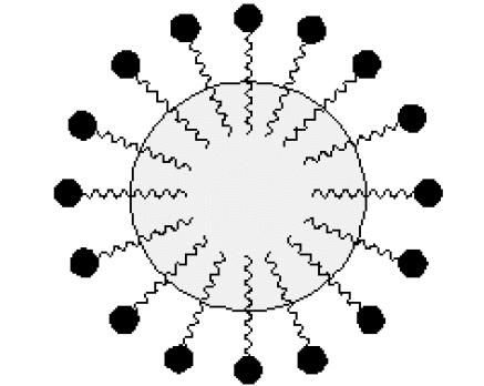 micella
