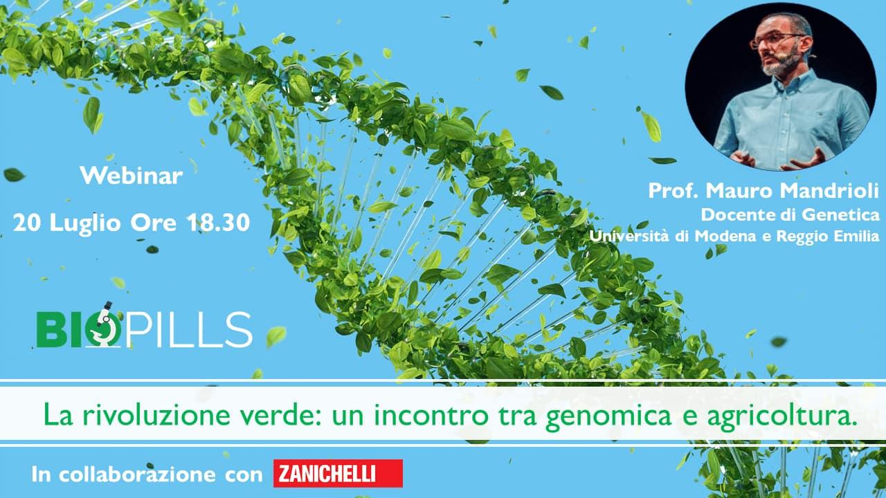 mandrioli webinar rivoluzione verde