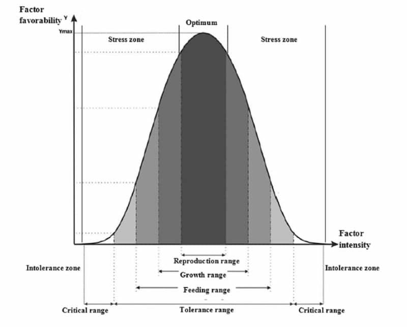 bioindicatori risposta ambientale