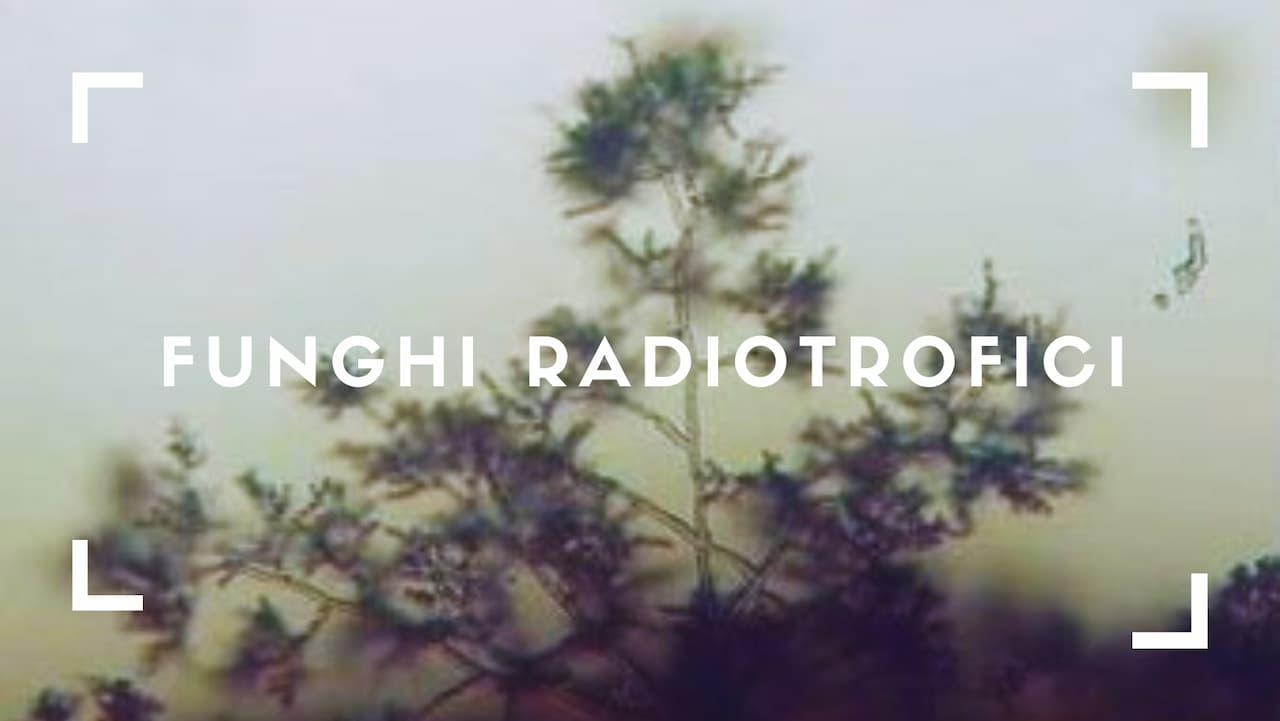funghi radiotrofici