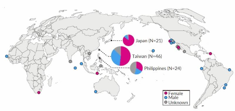 megamouth distribuzione